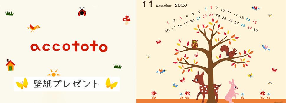 accototo壁紙202011